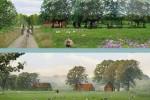 Toekomstvisie Landgoed Zuylestein Leersum_impressie Wayenstein bron AA architecten